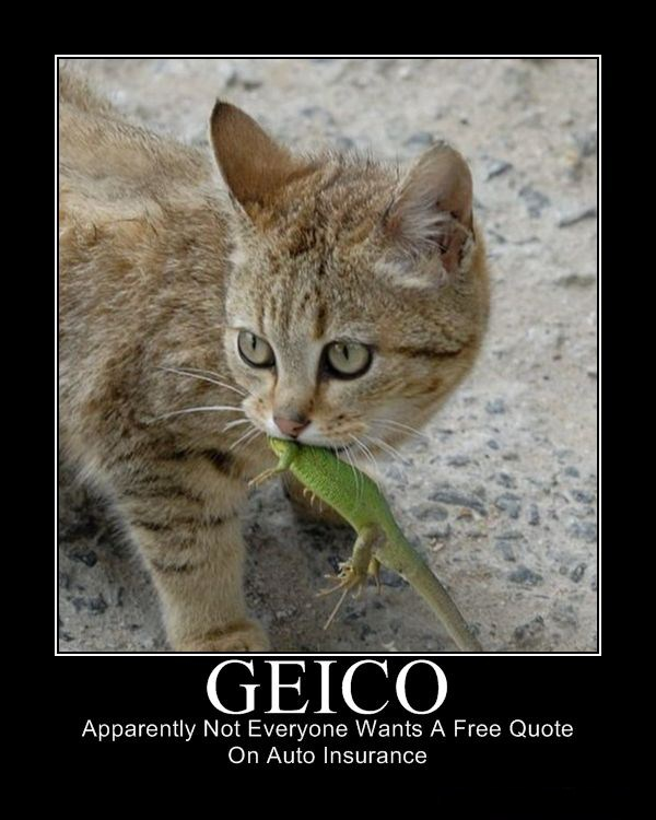 Geico Quote: Motivational Monday 7-26