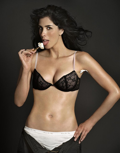 sarah silverman swimsuit pictures