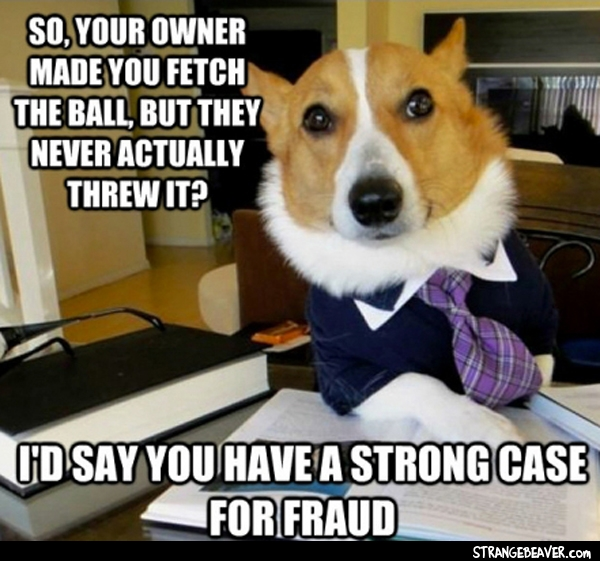 lawyer dog meme