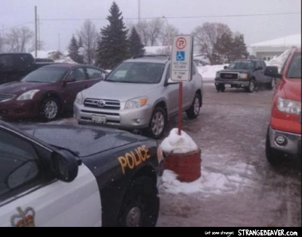 bad parking pictures