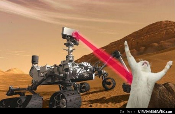 curiosity rover image