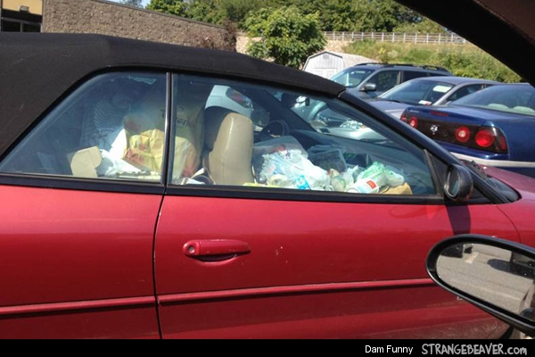 funny pictures from parking lot