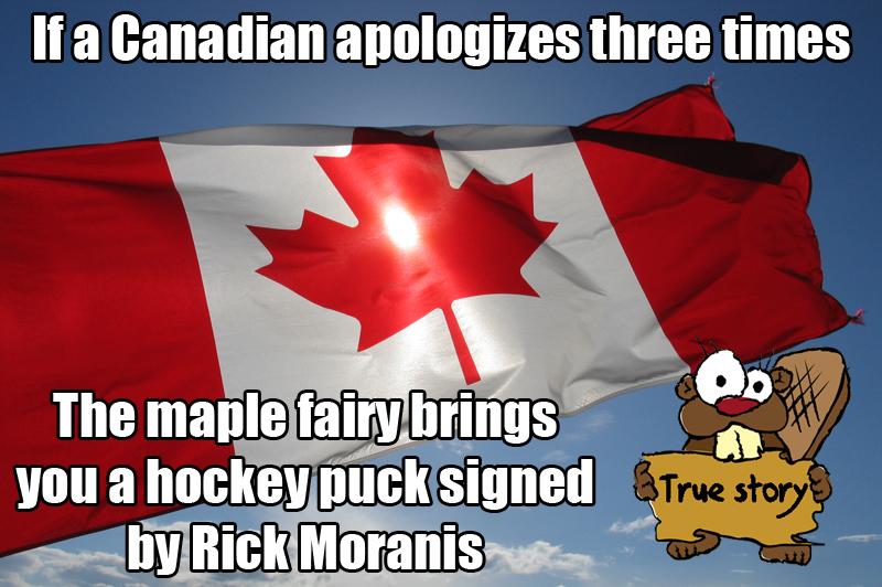 Canadian Maple Fairy