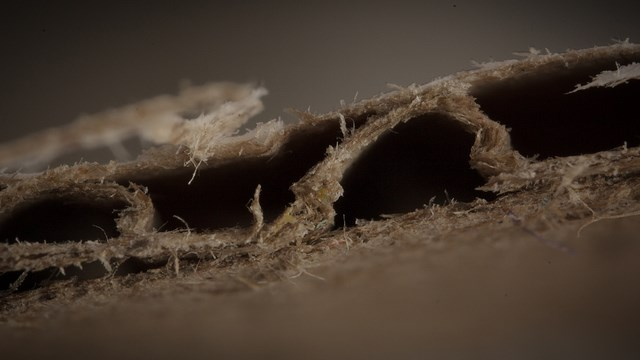Extreme Close-Up - Corrugated Cardboard