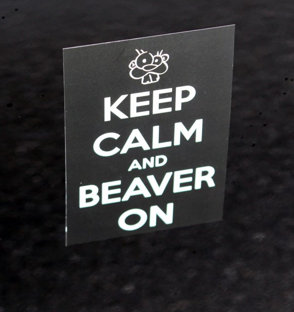 nana beaver badge