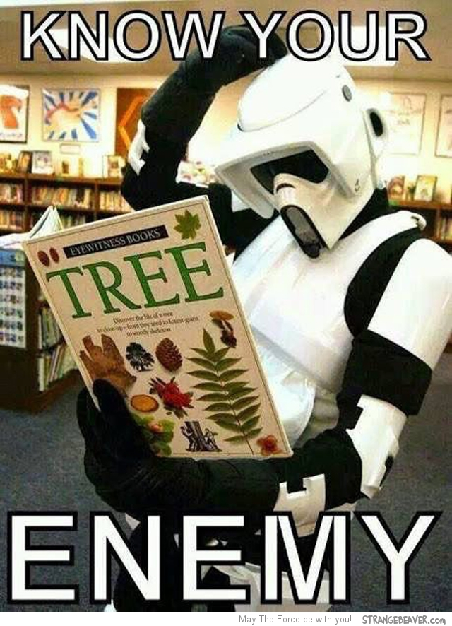 Funny Star Wars pictures