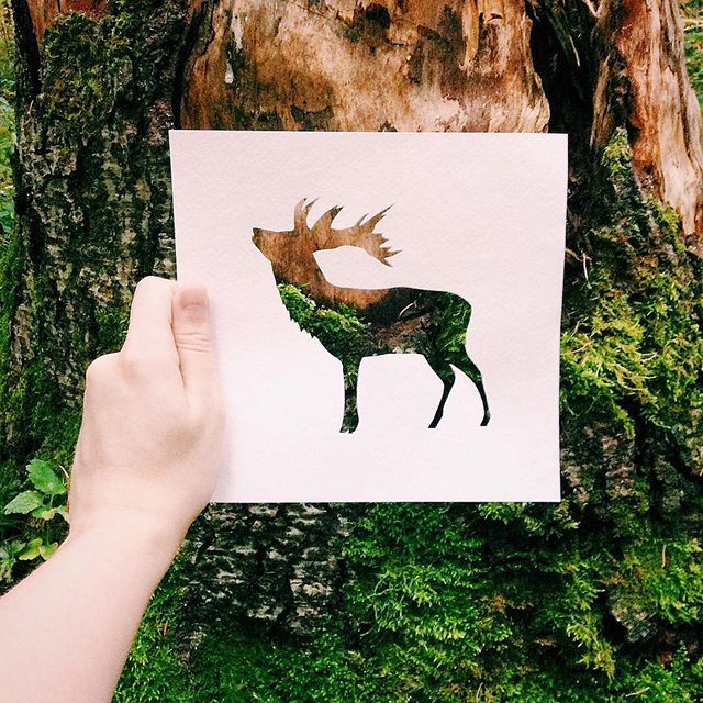 Incredible Cutout Photography by Nikolai Tolstyh