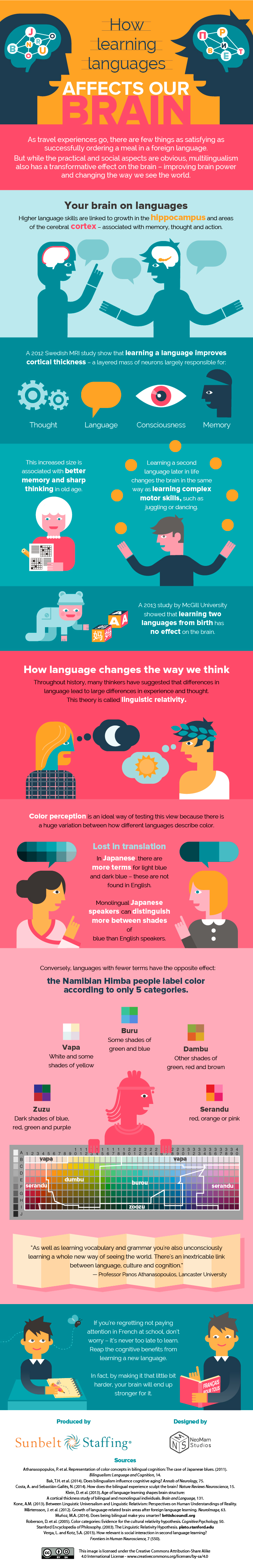 How Learning Languages Affects Our Brain - Infographic