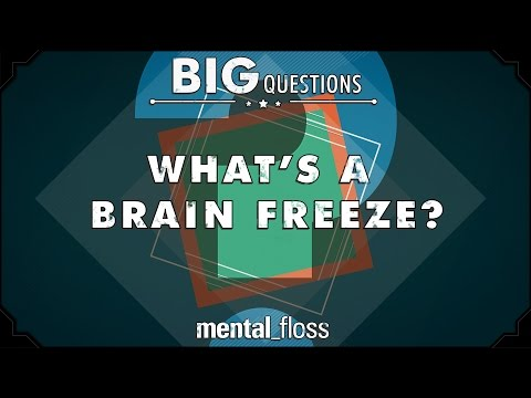 why we get a brain freeze essay Researchers are closer than ever to understanding why we have developed the next time they have a 'brain freeze' shut down the command centre in the brain.